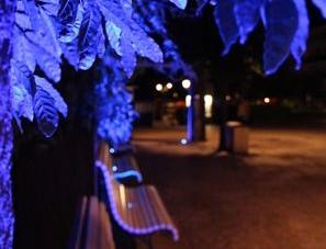 Lichtverschmutzung kann dem natürlichen Tag-und Nacht-Rhythmus entgegenwirken