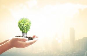 Energiesparende Lampen: Test der Stiftung Warentest