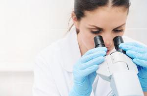 Lichtmikroskope: Einblicke in den Mikrokosmos