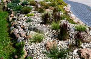 Moderne Steingarten mit Gräsern