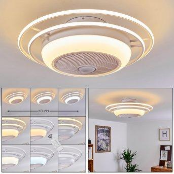 Sarasota Deckenventilator LED Weiß, 3-flammig, Fernbedienung