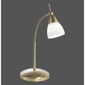 Paul Neuhaus PINO Tischleuchte LED Messing, 1-flammig