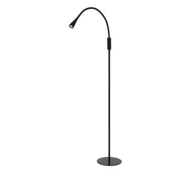 Lucide ZOZY Stehlampe LED Schwarz, 1-flammig