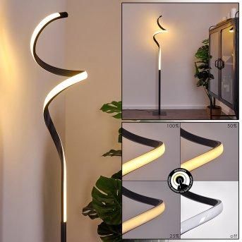 Pitasch Stehleuchte LED Schwarz, 1-flammig
