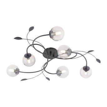 Paul Neuhaus WIDOW Deckenleuchte LED Schwarz, 6-flammig