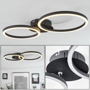 Malanje Deckenleuchte LED Schwarz, 2-flammig