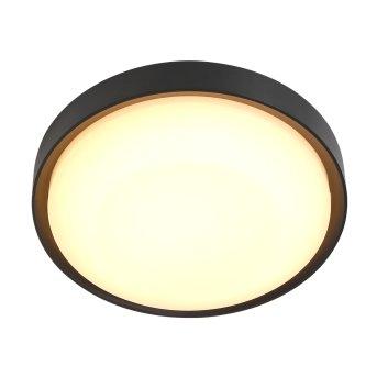 Steinhauer Fuga Außendeckenleuchte LED Schwarz, 1-flammig