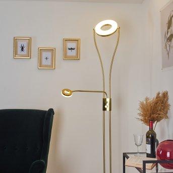 Tierz Stehleuchte LED Gold, 2-flammig