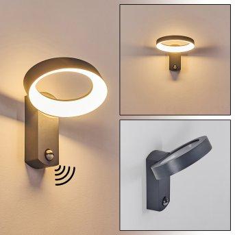 Carinola Außenwandleuchte LED Anthrazit, 1-flammig, Bewegungsmelder