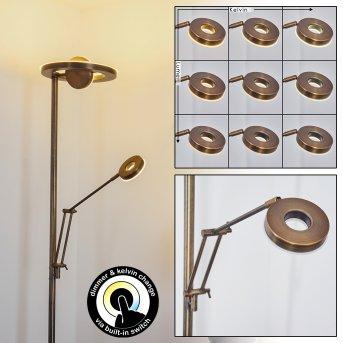 Rabeja Stehlampe LED Messing, 2-flammig
