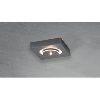 Escale SPOT IT Wandleuchte LED Anthrazit, 1-flammig