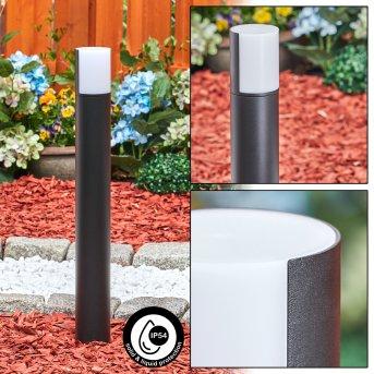 Baulund Wegeleuchte LED Schwarz, 1-flammig