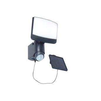 Lutec SUNSHINE Solar-Außenwandleuchte LED Anthrazit, 1-flammig, Bewegungsmelder