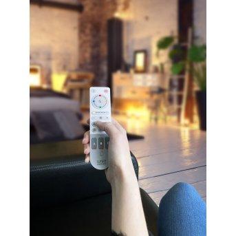 Lutec Remote Fernbedienung Grau, Weiß
