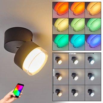 Papagayos Außendeckenleuchte LED Anthrazit, Weiß, 1-flammig, Farbwechsler