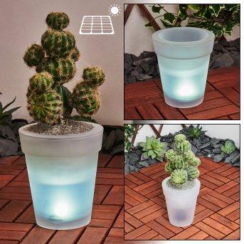 Dimouri  Solarleuchte LED Weiß, 4-flammig