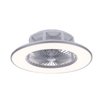 Leuchten Direkt MICHAEL Deckenventilator LED Edelstahl, 1-flammig, Fernbedienung