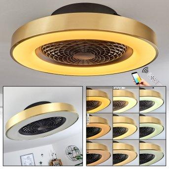 Penon Deckenventilator LED Schwarz, 1-flammig, Fernbedienung
