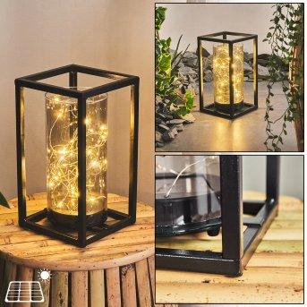 Aracaju Solarleuchte LED Schwarz, 30-flammig