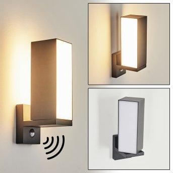 Swanek Außenwandleuchte LED Anthrazit, 1-flammig, Bewegungsmelder