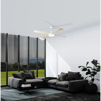 Eglo TRINIDAD Deckenventilator LED Weiß, 1-flammig
