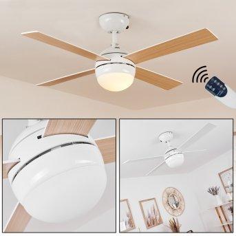 Hausvik Deckenventilator mit Beleuchtung Braun, Weiß, 1-flammig, Fernbedienung