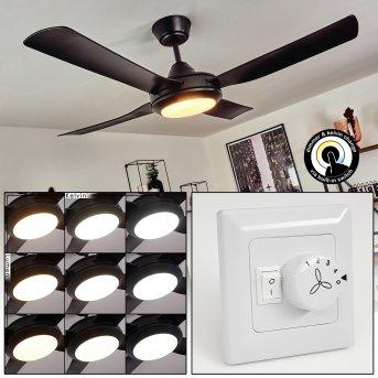 Tjerne Deckenventilator LED Schwarz, 1-flammig