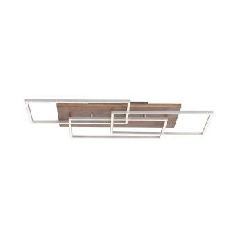 Paul Neuhaus PALMA Deckenleuchte LED Stahl gebürstet, Naturfarben, 1-flammig, Fernbedienung