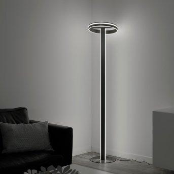 Paul Neuhaus Q-VITO Stehleuchte LED Anthrazit, 3-flammig, Fernbedienung