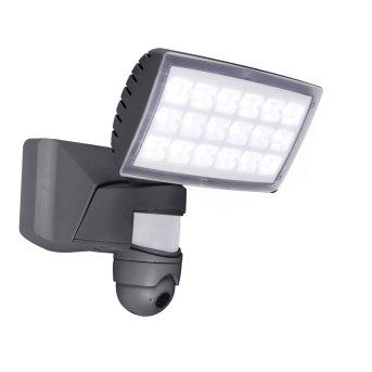 Lutec PERI CAM Aussenwandleuchte LED Anthrazit, 1-flammig, Bewegungsmelder