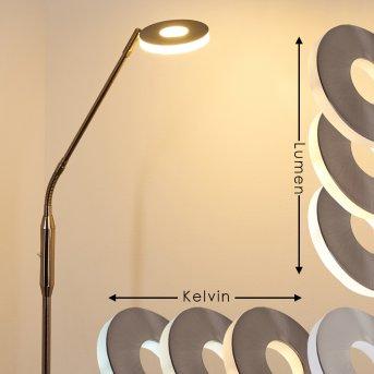 Gulkana Stehleuchte LED Nickel-Matt, 1-flammig, Farbwechsler