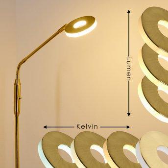 Gulkana Stehleuchte LED Gold, 1-flammig
