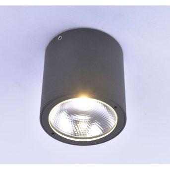 Paul Neuhaus GEORG Deckenleuchte LED Anthrazit, 1-flammig