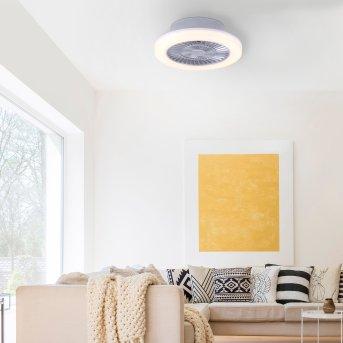 Leuchten Direkt LEONARD Deckenleuchte LED Nickel-Matt, 1-flammig