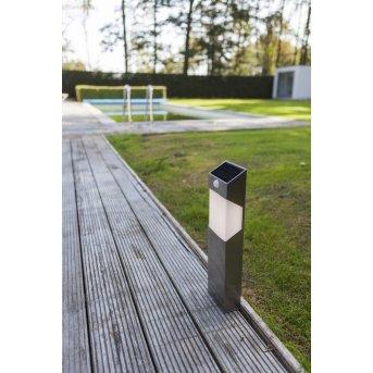 Lutec SOLSTEI Wegeleuchte LED Edelstahl, 1-flammig, Bewegungsmelder