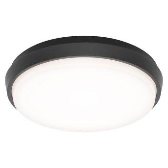 LCD TYP 5066 Außendeckenleuchte LED Schwarz, 1-flammig