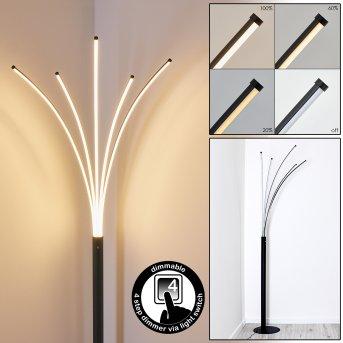 Bakersfield Stehleuchte LED Schwarz, Weiß, 1-flammig