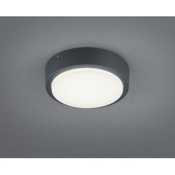 Trio Leuchten BREG Außendeckenleuchte LED Anthrazit, 1-flammig