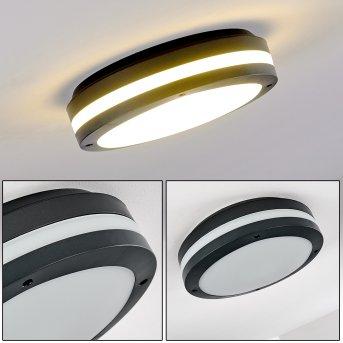 Wollongong Außendeckenleuchte LED Anthrazit, 1-flammig