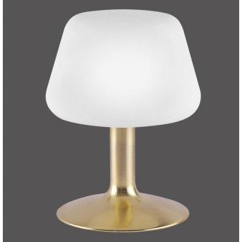 Paul Neuhaus TILL Tischleuchte LED Messing, 1-flammig