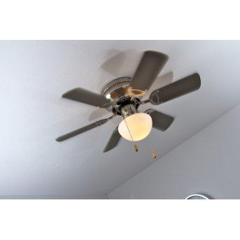 Globo UGO Ventilator Nickel-Matt, Edelstahl, 1-flammig