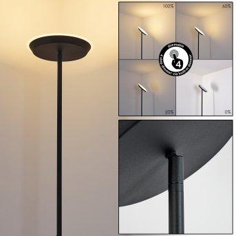 Mjölby Stehleuchte LED Schwarz, 1-flammig