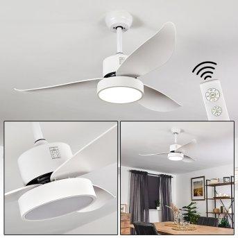Doha Deckenventilator LED Weiß, 1-flammig, Fernbedienung